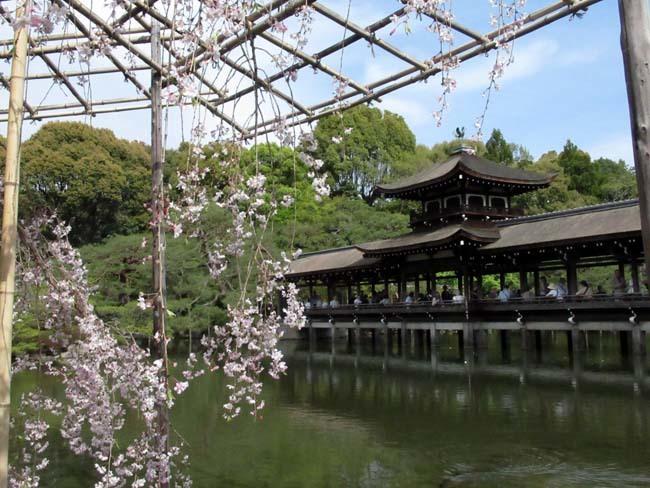 平安神宮 神苑散策_e0048413_18581962.jpg