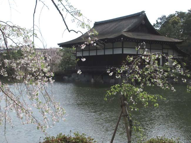 平安神宮 神苑散策_e0048413_18583373.jpg