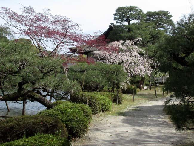 平安神宮 神苑散策_e0048413_18584007.jpg