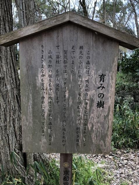 (13)知られざる裏天皇八咫烏_b0409627_19321522.jpg