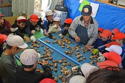 鮭稚魚放流会とシイタケ植菌体験なのだ!_c0259934_13423615.jpg