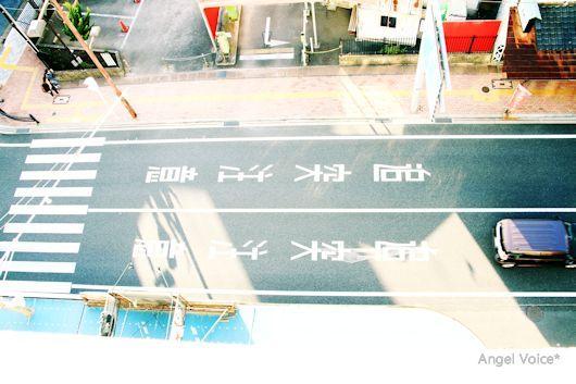 再燃_d0147742_15003262.jpg