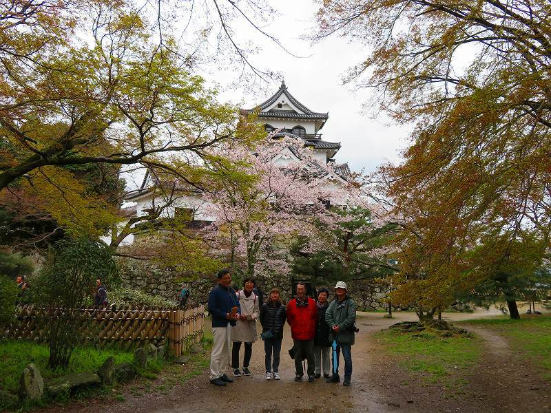 桜がきれいな彦根城(国宝)を散策20190410_e0237645_21095004.jpg