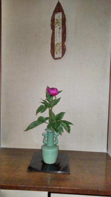 邸内に生けられた花 4月_d0344754_11173997.jpg