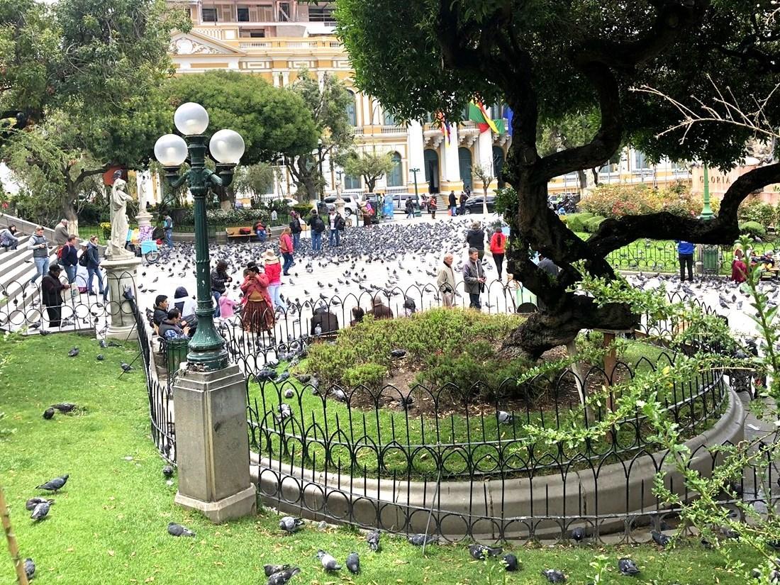 """中南米の旅/19  """"ムリリョ広場"""" は鳩だらけ(*_*) @ボリビア _a0092659_00424864.jpg"""