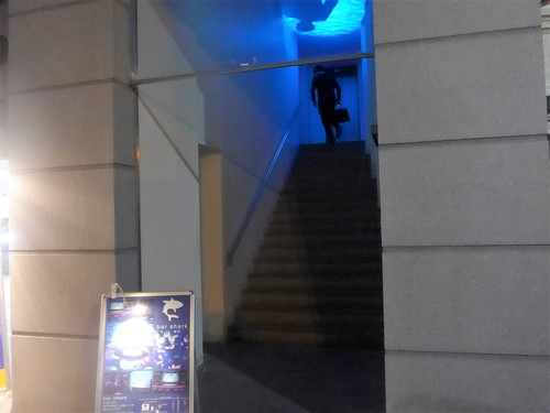 神戸・三宮「bar shark」へ行く。_f0232060_19504422.jpg