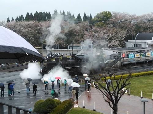 京都鉄道博物館_f0395164_20444029.jpg