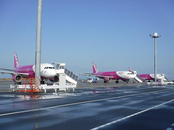◆沖縄出張 その1  ~月曜から混んでいます~ _f0238779_11374617.jpg