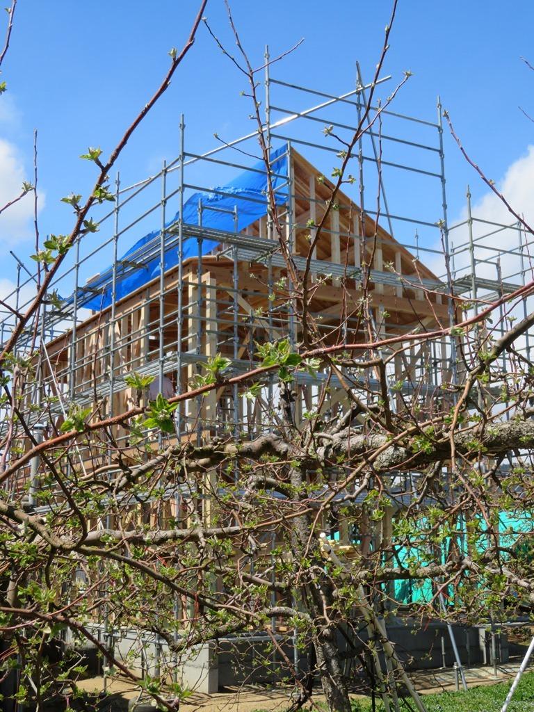 福島飯坂・子どもの育ちを見守る家、上棟です。 _b0118287_14465722.jpg