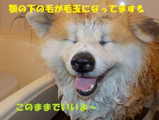 f0121712_00565169.jpg