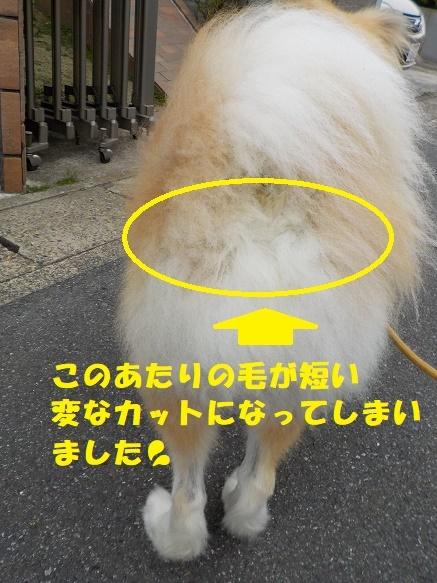 f0121712_01211387.jpg