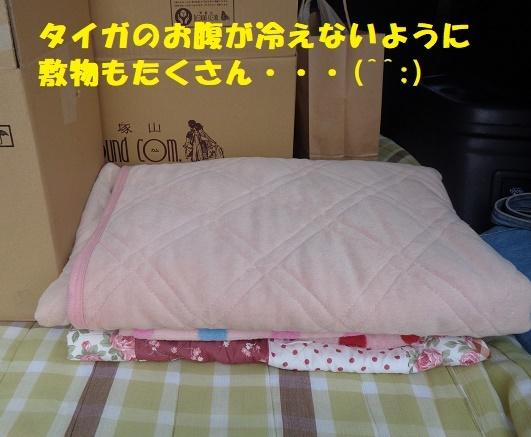 f0121712_21112661.jpg