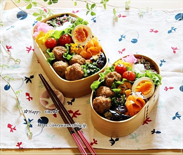 肉団子弁当と伊那・高遠城の桜♪_f0348032_16453443.jpg