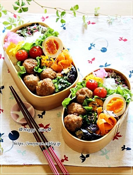 肉団子弁当と伊那・高遠城の桜♪_f0348032_16454306.jpg