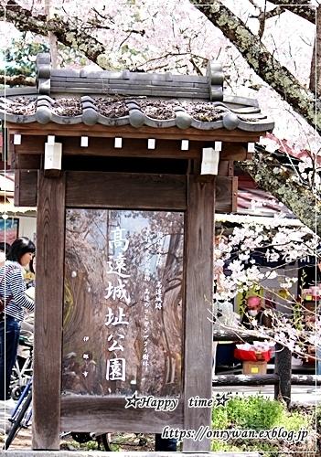 肉団子弁当と伊那・高遠城の桜♪_f0348032_16461005.jpg