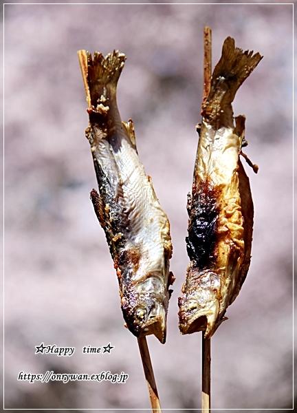 肉団子弁当と伊那・高遠城の桜♪_f0348032_16461775.jpg