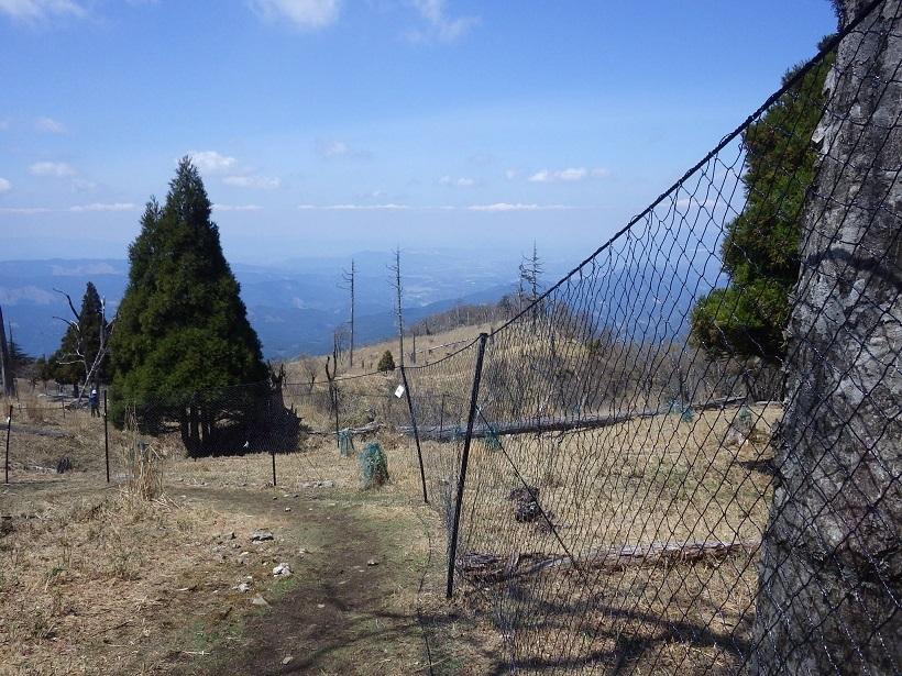 久しぶりに英彦山へ_e0164643_15452145.jpg