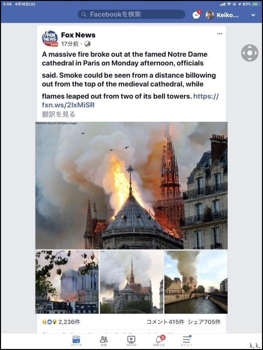 <ノートルダム大聖堂>の火災から七十二時間以上たってもまだ呆然としています_a0031363_06295788.jpg