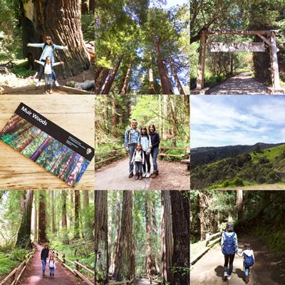 Spring Break in Muir Woods, CA スプリングブレイク in ミュアウッズ_e0253364_21072078.jpg