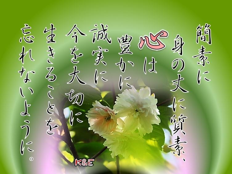 f0214467_10591894.jpg