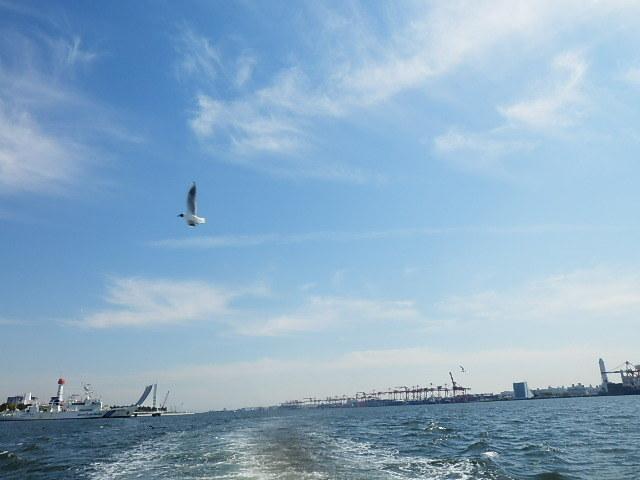 「国民とともに歩まれた写真展」と「東京湾クルーズ」 _e0378686_10520708.jpg