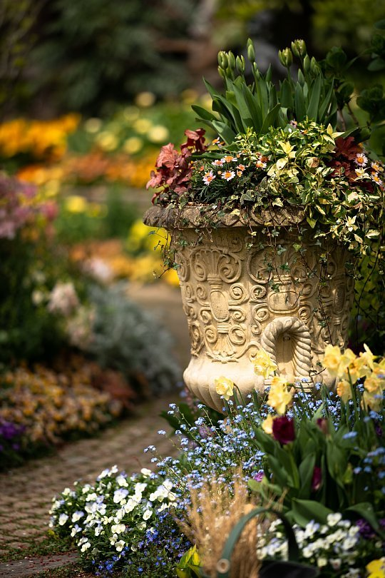 春から初夏へ移ろう英国庭園_d0353489_00171111.jpg