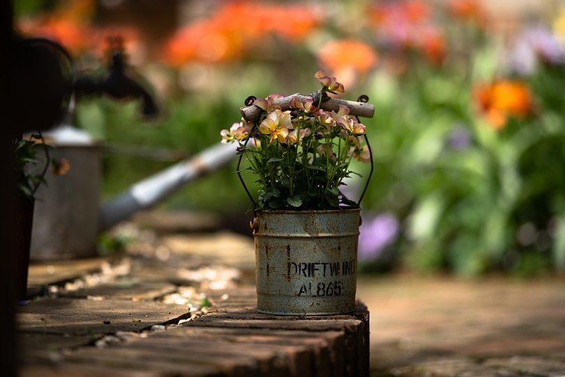 春から初夏へ移ろう英国庭園_d0353489_00175265.jpg