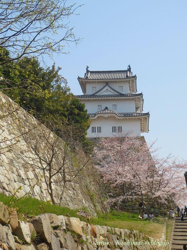 明石城と桜_f0374092_17412008.jpg