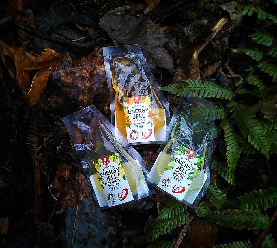 普段食べても美味しい「低GI宮崎エナジージェル」新入荷_d0198793_23455646.jpg
