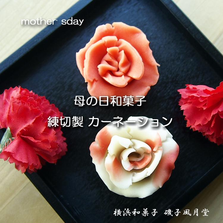 母の日 2019 カーネーションの和菓子 ご予約開始☆磯子風月堂_e0092594_17402641.jpg
