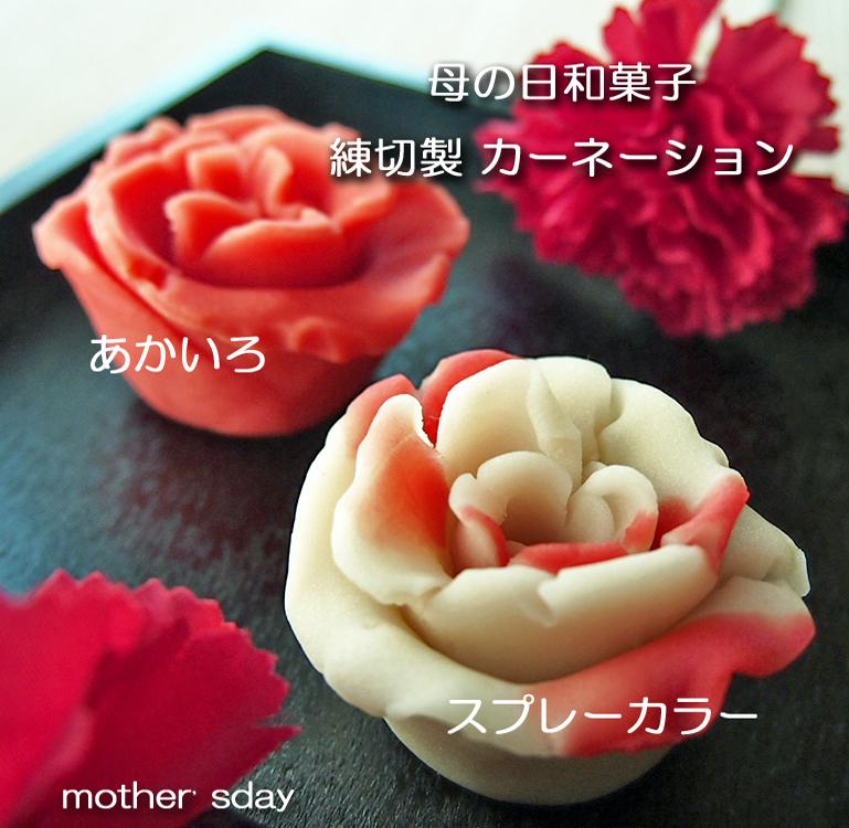 母の日 2019 カーネーションの和菓子 ご予約開始☆磯子風月堂_e0092594_17445287.jpg
