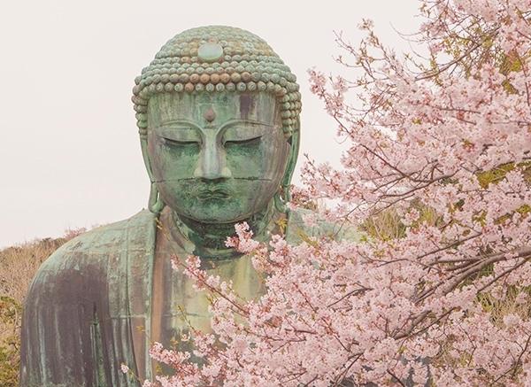 鎌倉大仏と桜_b0145398_18371190.jpg