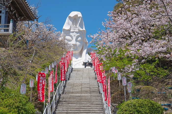 大船観音寺と桜_b0145398_18560127.jpg