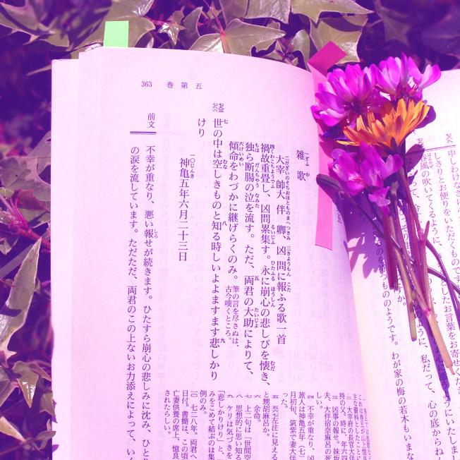 令和→大宰府(再投稿修正)_a0329820_13281384.jpg