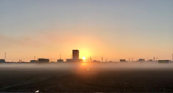 なんかも神々しい朝を迎えました。_c0061727_11194592.jpg