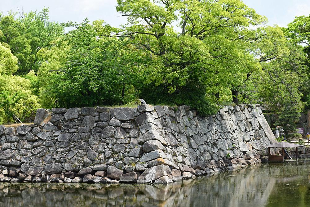 漆黒の烏城、備前岡山城を歩く。 その1「内堀~大手門」_e0158128_20225552.jpg