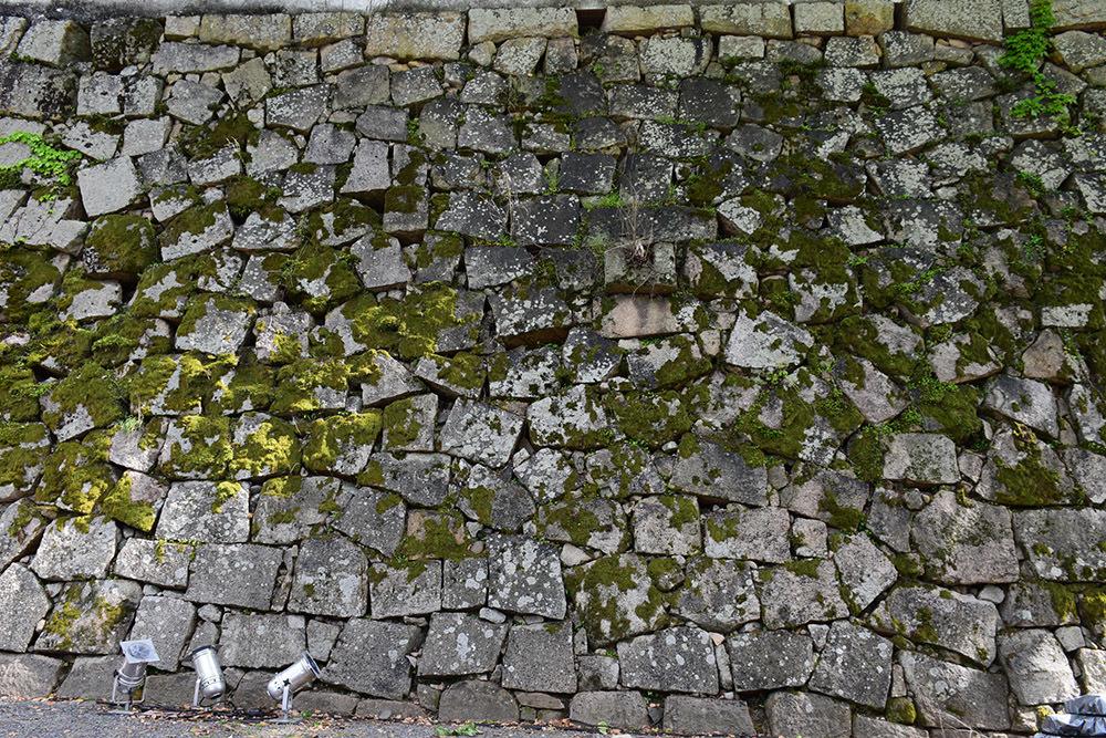 漆黒の烏城、備前岡山城を歩く。 その2「本丸下の段」_e0158128_21014807.jpg