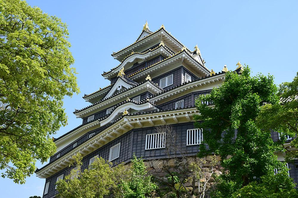 漆黒の烏城、備前岡山城を歩く。 その2「本丸下の段」_e0158128_21075491.jpg