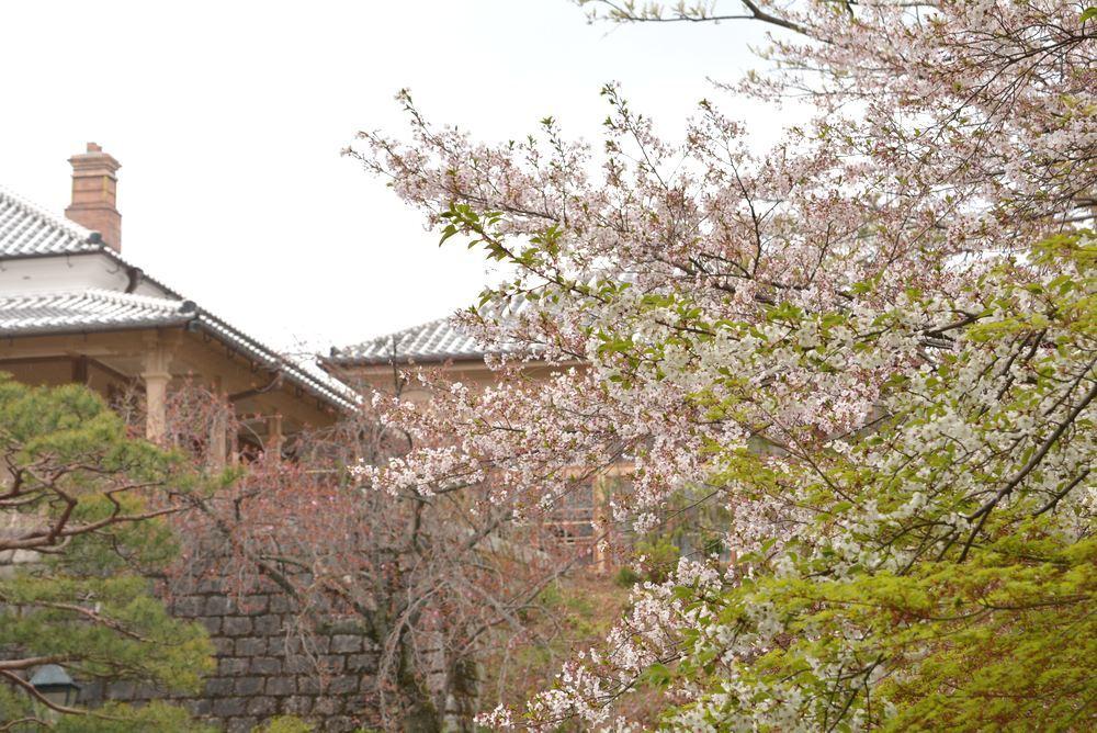 長崎居留地二十五番館 まもなく公開再開_e0373930_22195870.jpg