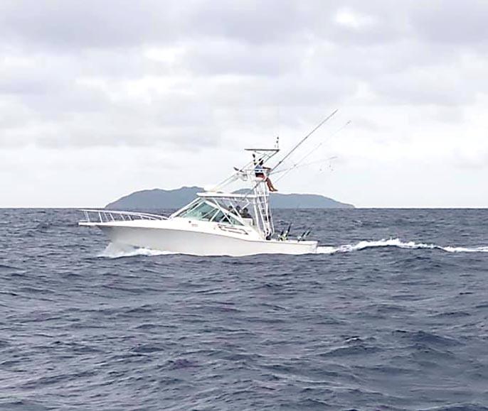琉球BGFT初日、カジキが釣れています。_f0009039_14092470.jpg