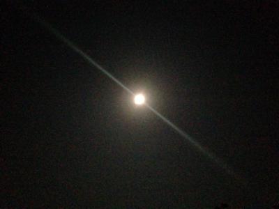 必然の意味・光の導き***_e0290872_16215134.jpg