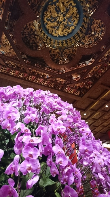 圓山大飯店(台北)_c0325278_20334587.jpg