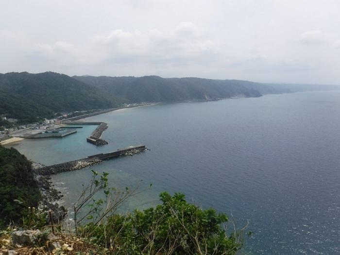 ◆沖縄出張 その2  ~初めてのやんばる~ _f0238779_20165245.jpg