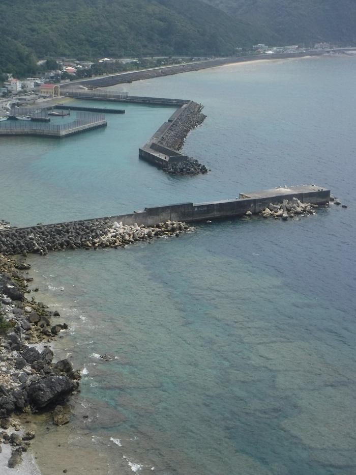 ◆沖縄出張 その2  ~初めてのやんばる~ _f0238779_20170205.jpg