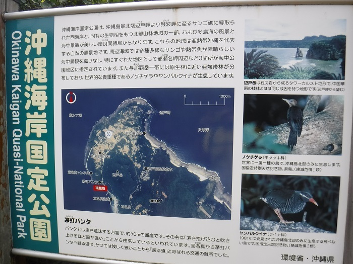 ◆沖縄出張 その2  ~初めてのやんばる~ _f0238779_20172669.jpg
