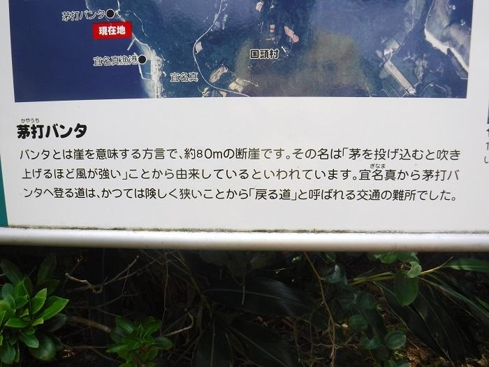 ◆沖縄出張 その2  ~初めてのやんばる~ _f0238779_20173392.jpg