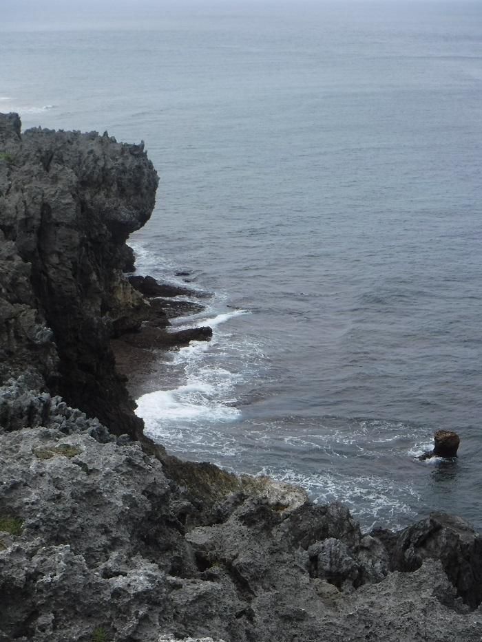 ◆沖縄出張 その2  ~初めてのやんばる~ _f0238779_20175894.jpg