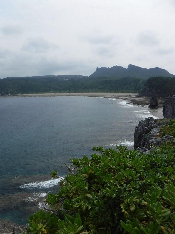 ◆沖縄出張 その2  ~初めてのやんばる~ _f0238779_20185175.jpg