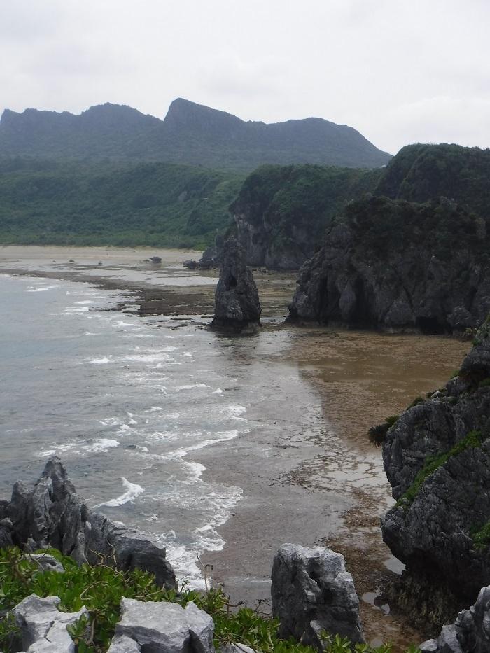 ◆沖縄出張 その2  ~初めてのやんばる~ _f0238779_20191467.jpg