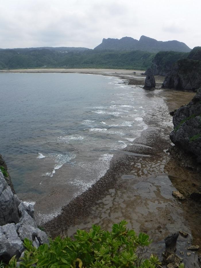 ◆沖縄出張 その2  ~初めてのやんばる~ _f0238779_20192595.jpg